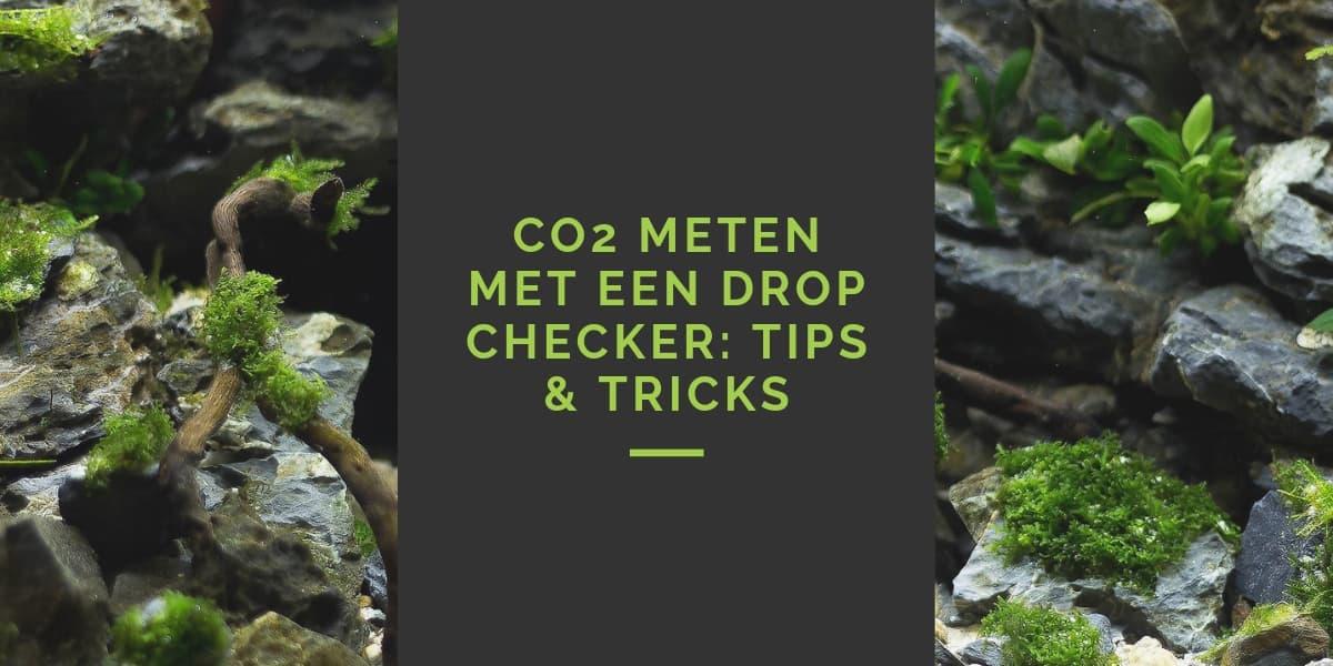 CO2 meten drop checker