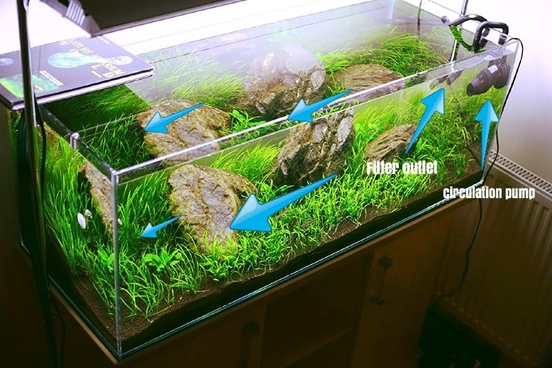 Stromingsrichting & watercirculatie aquarium