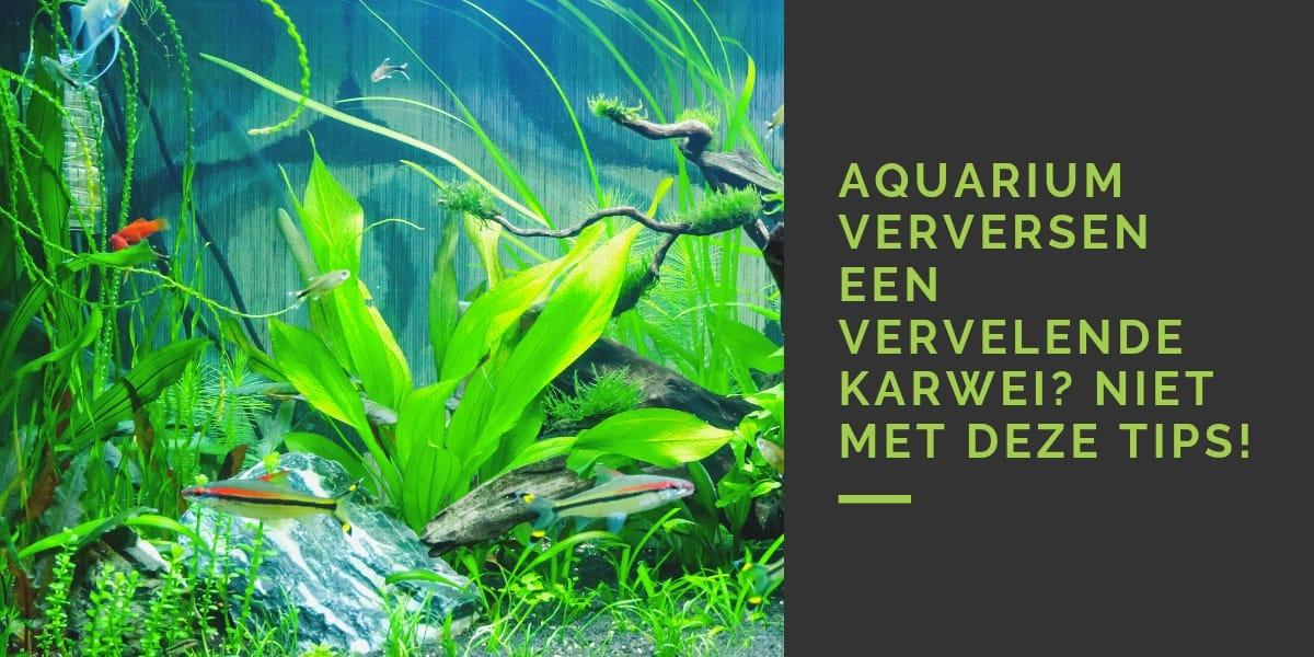 Aquarium verversen