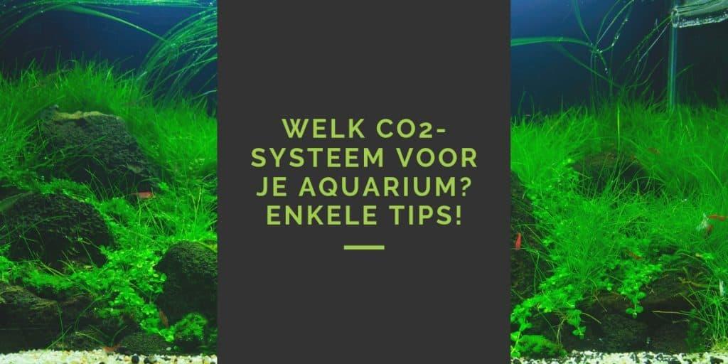 Welk CO2-systeem