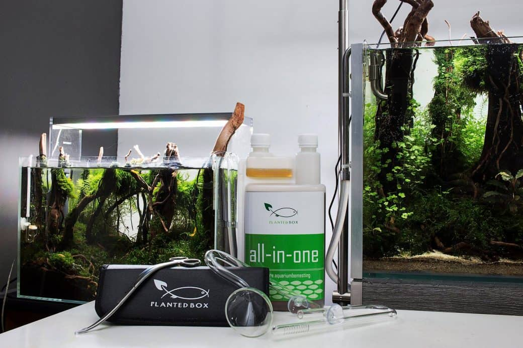 PlantedBox | Aquariumbemesting, materiaal & advies op maat | PlantedBox