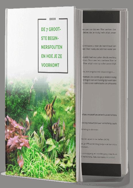 E-books | PlantedBox