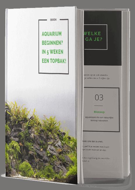 Advies | PlantedBox