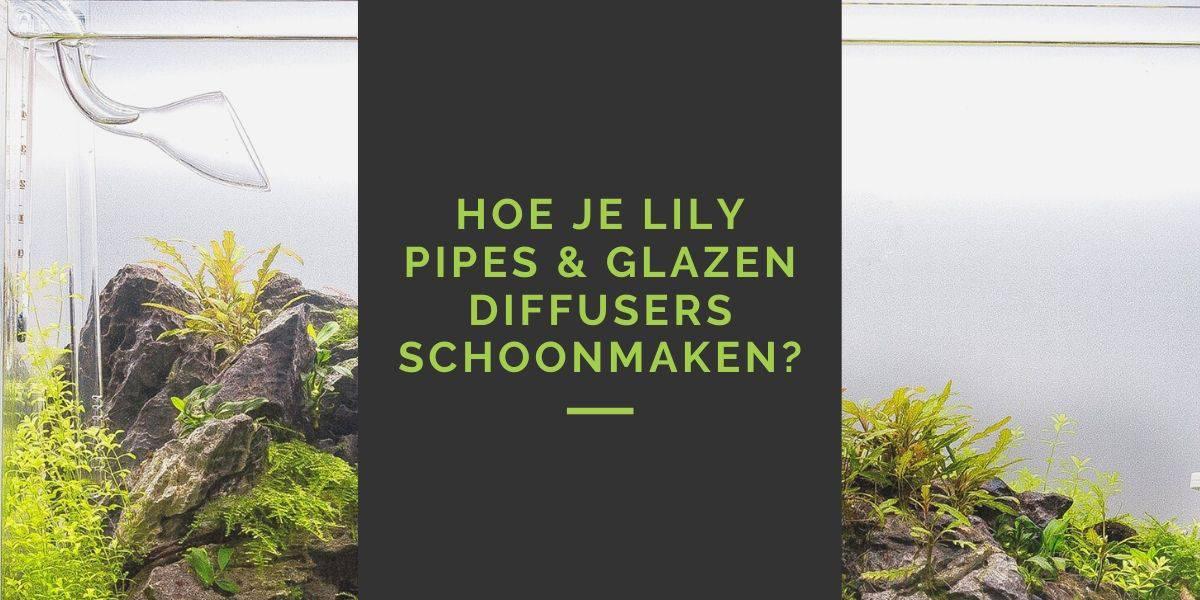Hoe je lily pipes & glazen diffusers schoonmaken?